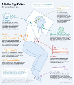 Sleep Infographic Credit WSJ vis The Best Infographics